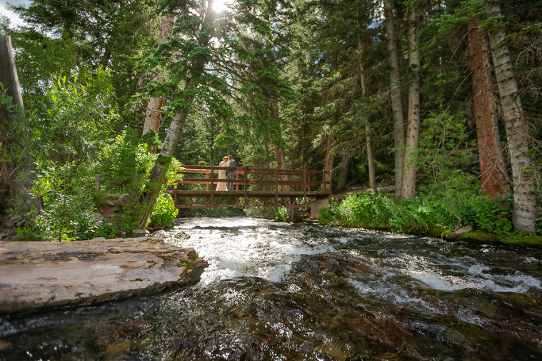 eloping-in-the-forest-colorado